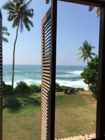 The Frangipani Tree by Edwards Collection : View from room