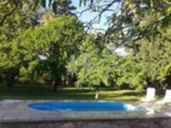 Hotel Boutique Bodega Florio: Nuestra piscina