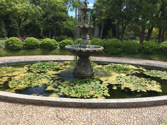 Jardim botanico montevideo picture of jardin botanico for Hotel jardin botanico