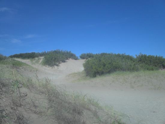 Valeria del Mar Beach: medanos grandes