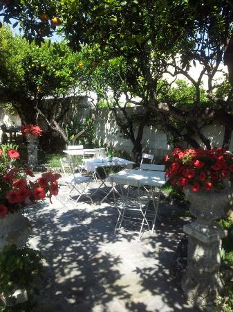 Locanda Fiore di Zagara : light and shadow in the garden of eden