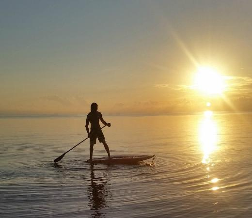 SeaKunga Adventures : Paddle Boarding At Placencia