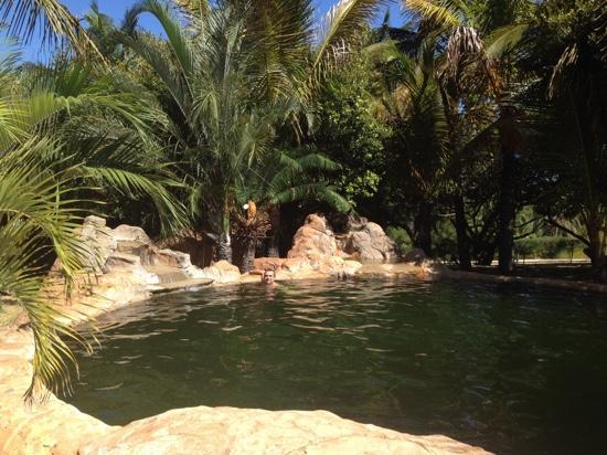 Zongoene Lodge: swiming pool