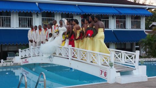 Hibiscus Lodge Hotel An Accidentally Crashed Wedding At The Pool