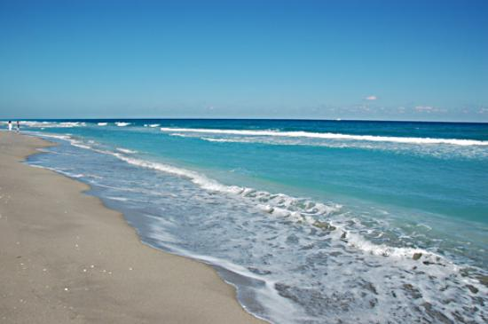 Jupiter Dog Beach The Florida Of Your Dreams