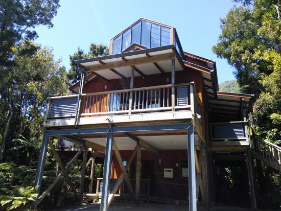 HAVENz: Rimu Treehouse