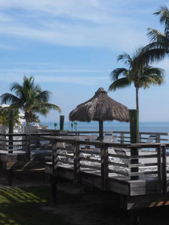 Caloosa Cove Resort & Marina: Caloosa Cove view from room.