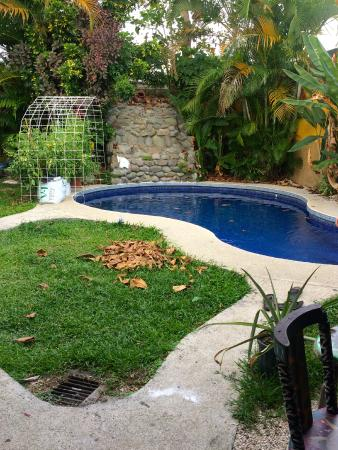 Las Camas Budget Hostel: refreshing