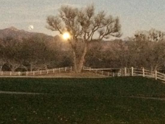 Tubac Golf Resort & Spa: Moonrise view from the Stables Pub