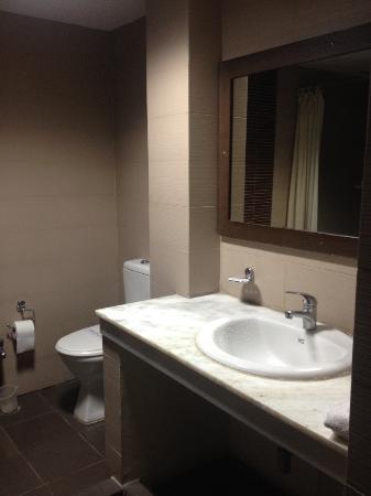 Hotel Gautam Deluxe: トイレの向かい側にシャワー