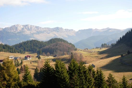 Cheile Gradistei Fundata: View from tea house terrace