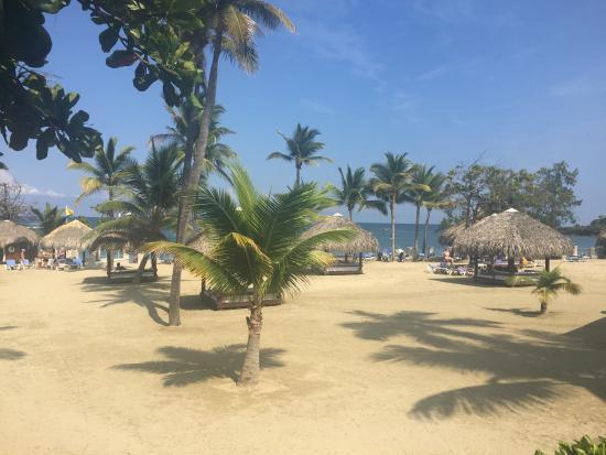 Cofresi Palm Beach & Spa Resort : Cofresi