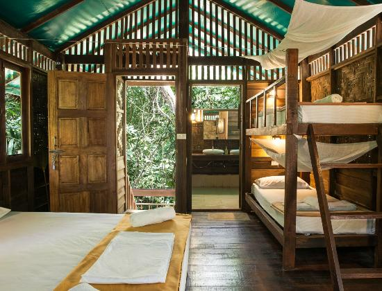 Photo of Our Jungle House Khao Sok National Park