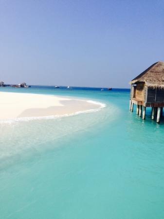 JA Manafaru : Strand