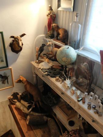 Escale de Loire: In the corridor owner's collection