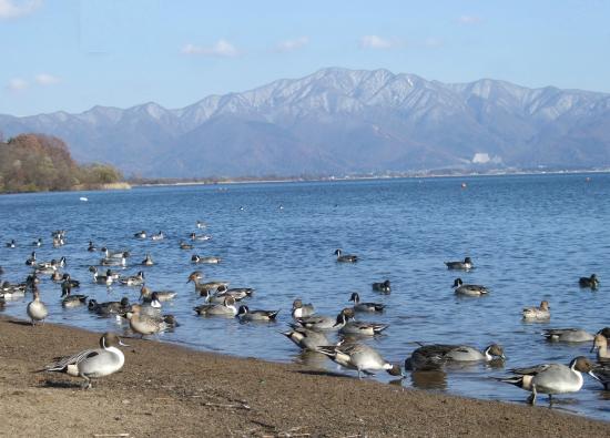 Lake Inawashiro: 湖面に映る磐梯山を眺められます