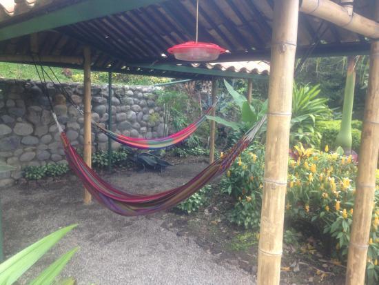La Union, Ekuador: Hammock