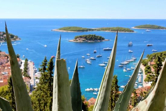 Amazing Hvar Day Tours