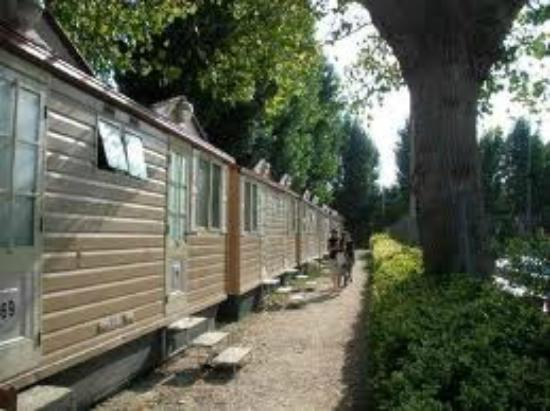 Jolly Camping in Town: BUNGALOW