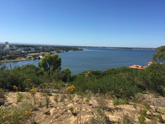 The New Esplanade Hotel: Kings Park-Vista panorâmica do Swan river e a cidade de Perth