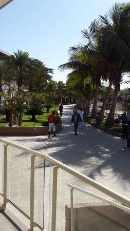 Terrou-Bi : plage et accès vers piscine