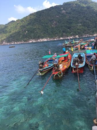 Nangyuan Island Dive Resort: Water taxi's