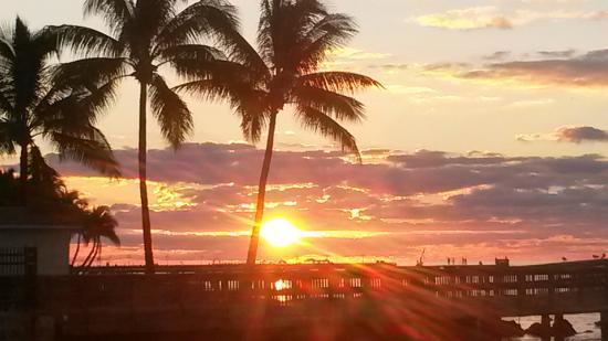 Coconut Beach Resort : Gorgeous Sunrise