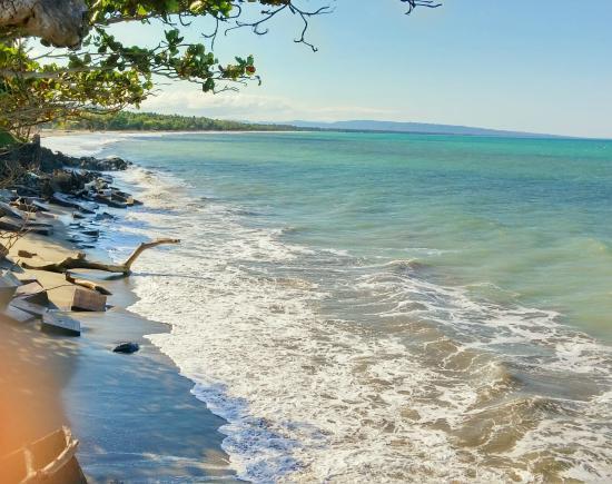 Playa De Gaspar Hernandez Picture Of Grand Bahia