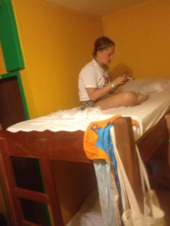 Dirty Mcnasty's Hostel : Beds in 6 person dorm