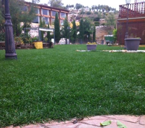 Finca la Cervalera: jardines