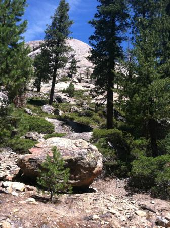 North Fork, CA: High Country near Wagner's Mammoth Pool