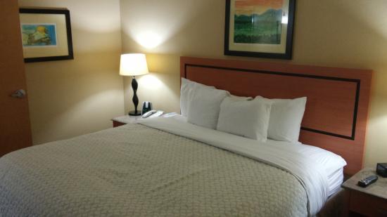 Embassy Suites by Hilton Dorado del Mar Beach Resort: room