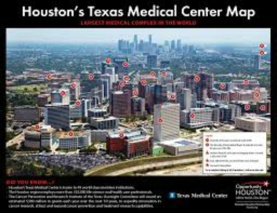 Texas Medical Center  Picture of Holiday Inn Houston  NRG