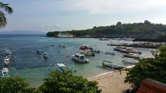 Absolute Scuba Bali: Padang Bai