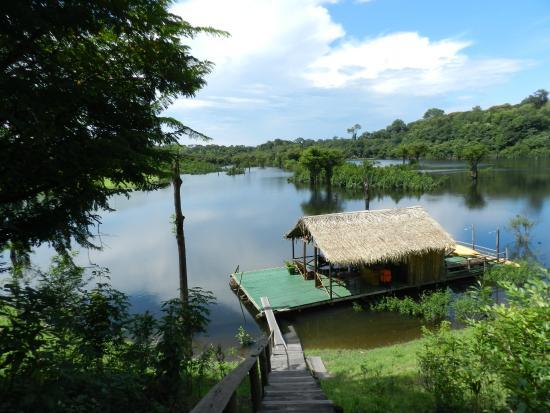 Amazon Turtle Lodge : vista do píer lugar maravilhoso