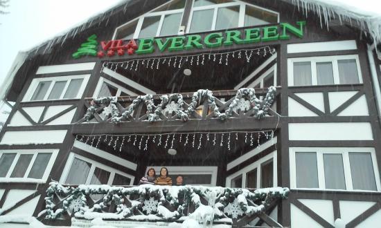 Vila Evergreen : Fairyland