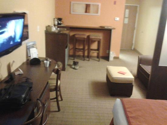 Microtel Inn & Suites by Wyndham Albertville: Suite