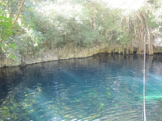 Hummer Jungle Tours : cenote