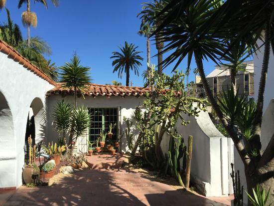 San Clemente, كاليفورنيا: Cactus Garden