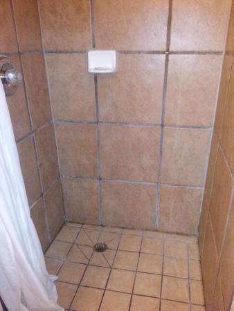 Rodeway Inn Downtown: Large Walk-in Shower; hot water & excellent water pressure