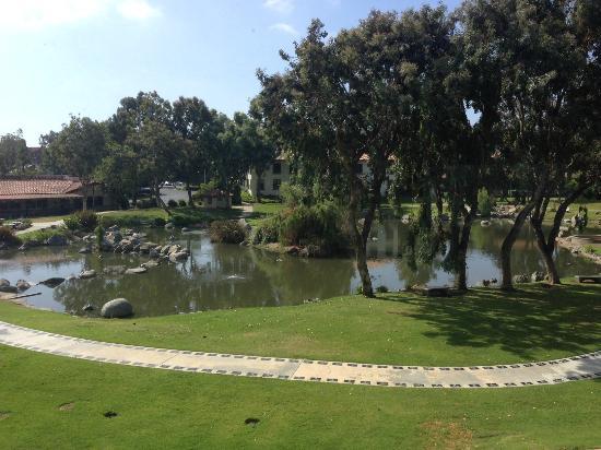 Courtyard San Diego Rancho Bernardo : room 366 view