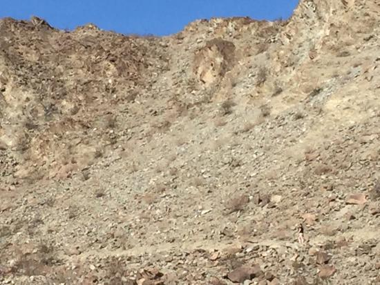 Bump and Grind Trail : Trail