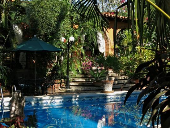 Suites La Hacienda: Pool in front of reception