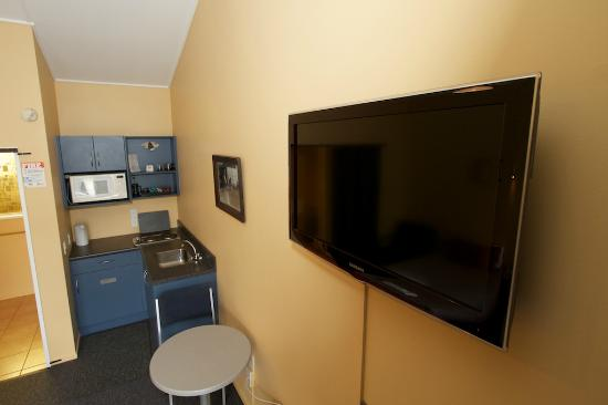 Homestead Lodge Motel: Flat Screen Televisions in all rooms