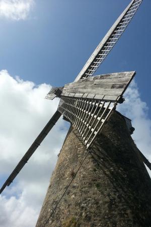 Morgan Lewis Mill: Morgan Lewis (Sugar) Mill