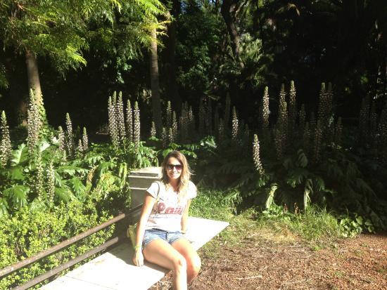 Museu picture of jardin botanico buenos aires tripadvisor for Jardin 87
