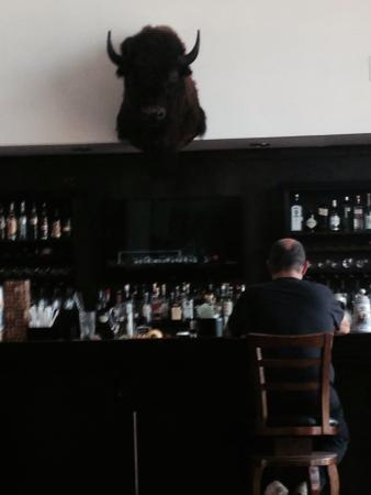 Buffalo BBQ: El bufalo