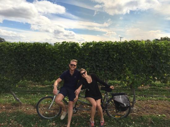 Bike 2 Wine : Tandem fun!