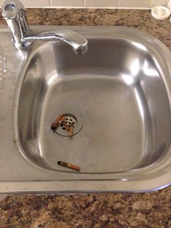 AEA Bridgeport: Cigarette butts in the apartment they just moved us to