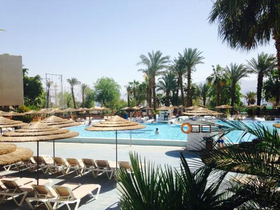 U Coral Beach Club Eilat Pool - Picture ...